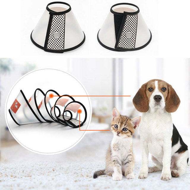 Durable Collar Protection for Pet