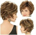 New style Golden brown with  Blonde Highlights Short fluffy alice Curly Women Female Lady Hair wig free shipping