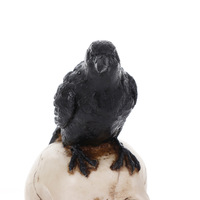 Resin Craft Statues For Decoration Skull Crow Skull Fashion Home Decor Creative Statue Personalized Ornaments Statues Sculptures