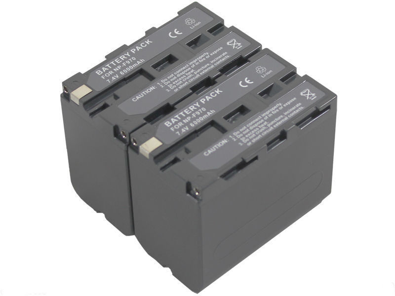 Free Shipping new 2pcs Battery and Dual Charger NP-F970 NP-F930 NPF950 For CCD-TR730E TR8000