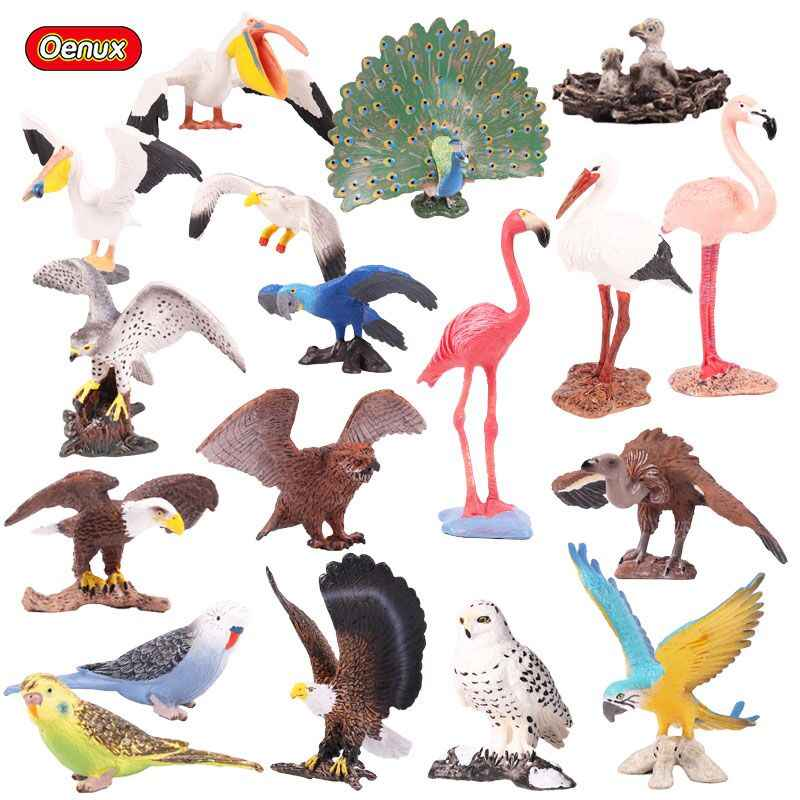 Oenux Original Bird Paradise Flamingos Macaw Sea Gull Pelican Snowy Owl Figurines High Quality PVC Animals Action Figure Kid Toy