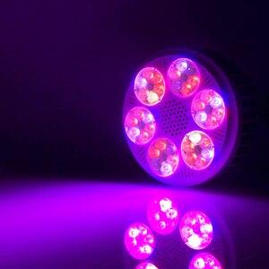 Image 5 - 4 개/몫 Led 식물 성장 램프 120W 전체 스펙트럼 Phytolamp LED 실내 수경 법 씨앗에 대 한 빛을 성장 Vegs 꽃 전구