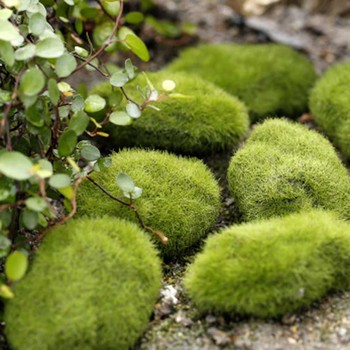 New Artificial Fake Moss Lawn Mossy Stone Model Micro Landscape Fairy Garden Miniature Decoration Ornament image