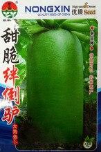 Отключения большой редис семян овощных семян сладкий хрустящий сладкий и хрустящий и вкусный 10 г/мешок