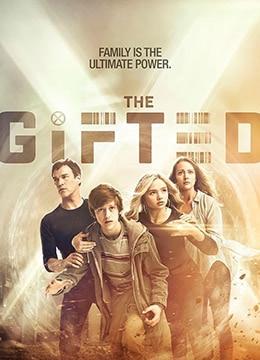《天赋异禀 第一季》2017年美国动作,科幻,奇幻电视剧在线观看