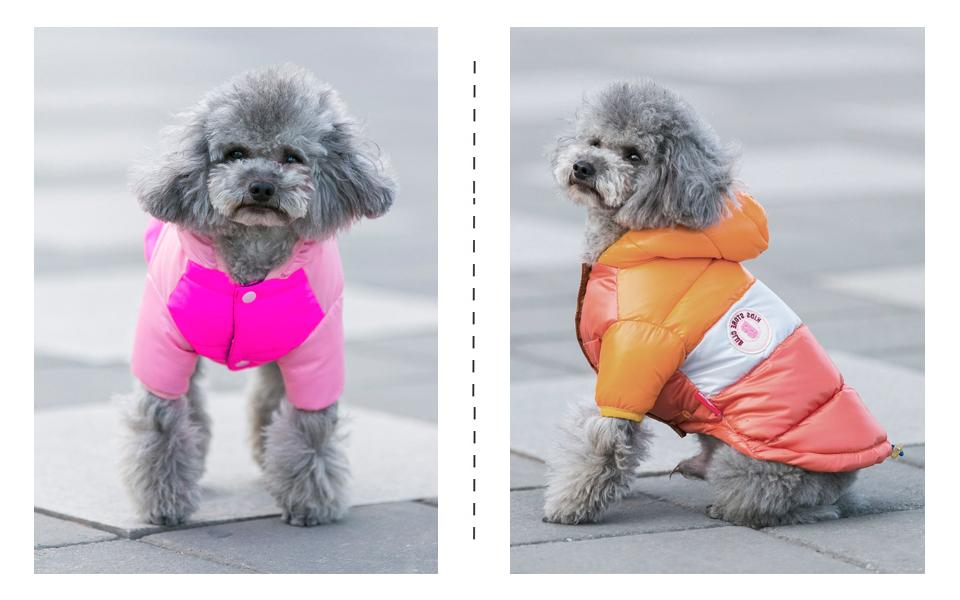Nueva ropa de invierno para perros, abrigo impermeable con capucha 14