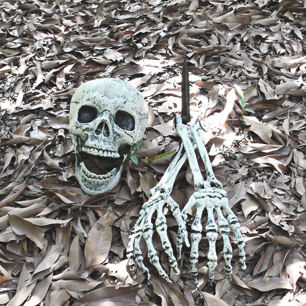 aliexpress : buy halloween skeleton skull head halloween skull