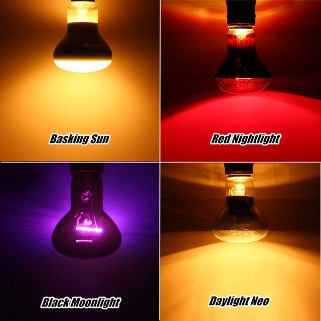 Smuxi Pet Heating Lamp E27 Day Night Amphibian Bird Snake Basking Sun Lamp  Heat Reptile Light Bulb 25W 50W 75W 100W AC220 240V