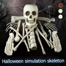 Halloween skeleton skull Head Halloween skull bones life size Skull Haunted House Escape horror prop Decorations For Bar KTV 3