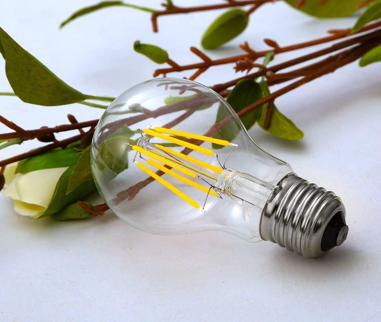 Image 2 - Ganriland 12 v 24 v lâmpada led a19 filamento lâmpada baixa  tensão 6 w edison globo lâmpadas 4500 k luz do dia branco quente 2700 k  e26 e27Lâmpadas LED e tubos