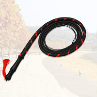Kung Fu Whip Integrated Rubber Whip Martial Arts Fitness Whip Kung Fu Weapons