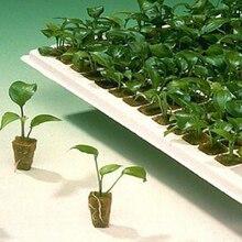 Grodan вегетационные кубики заглушки для стартера выращенные Кубы Soilless вегетационные кубики гидропоники растут мини-блоки клонирование Stonewool