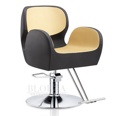 Elegant Hair Salon Hair Chair. Hydraulic Chair. Cotton