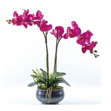Phalaenopsis Orchid Silk Real Touch Flower White Artificial Wedding  Floral Christmas Party Free Shipping