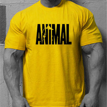 c22f0e5010c0 Muscleguys Brand Men's Animal Gyms Shirts,Wear T Shirt Men Fitness  Bodybuilding Workout Clothes 100