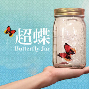 Wholesale ,Free shipping, Festival Gift  Hot Sell Valentines Christmas Electronic Butterfly IN A Jar