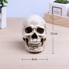 Artificial skull resin 1:2 sculpture crafts Halloween decoration DIY party decorations coffee bar bar tabletop decorations(China)