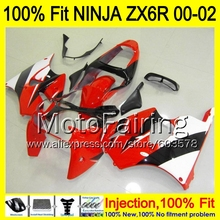8Gifts Injection mold Body For KAWASAKI NINJA ZX-6R 00-02 1HM75 ZX 6R ZX6R 00 01 02 ZX636 636 2000 2001 2002 Fairing red black