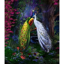 5D diy diamond painting peacock full square embroidery mosaic cross stitch needleworks H742