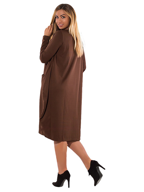 Women Plus Size Loose L-6XL Big Sizes Long Sleeve Casual With Pocket Autumn Winter Fashionable Elegant Dress.