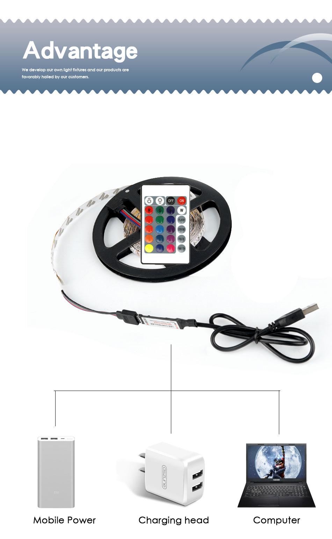 HTB1D0SDTrPpK1RjSZFFq6y5PpXaz USB LED Strip DC 5V 50CM 1M 2M 3M 4M 5M Mini 3Key 24Key Flexible Light Lamp SMD 2835 Desk Decor Screen TV Background Lighting