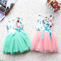 Girls Summer Dress Baby Kids Toddler Princess Flowers Print Floral Top Bow Tutu Dresses Summer Dress