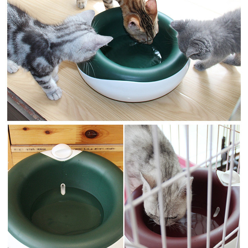 2L Pet Cat Water Feeder with Activated Carbon Filter Dog Home Outdoor Drinking Water Bowl Drinking water health Pet Supplies