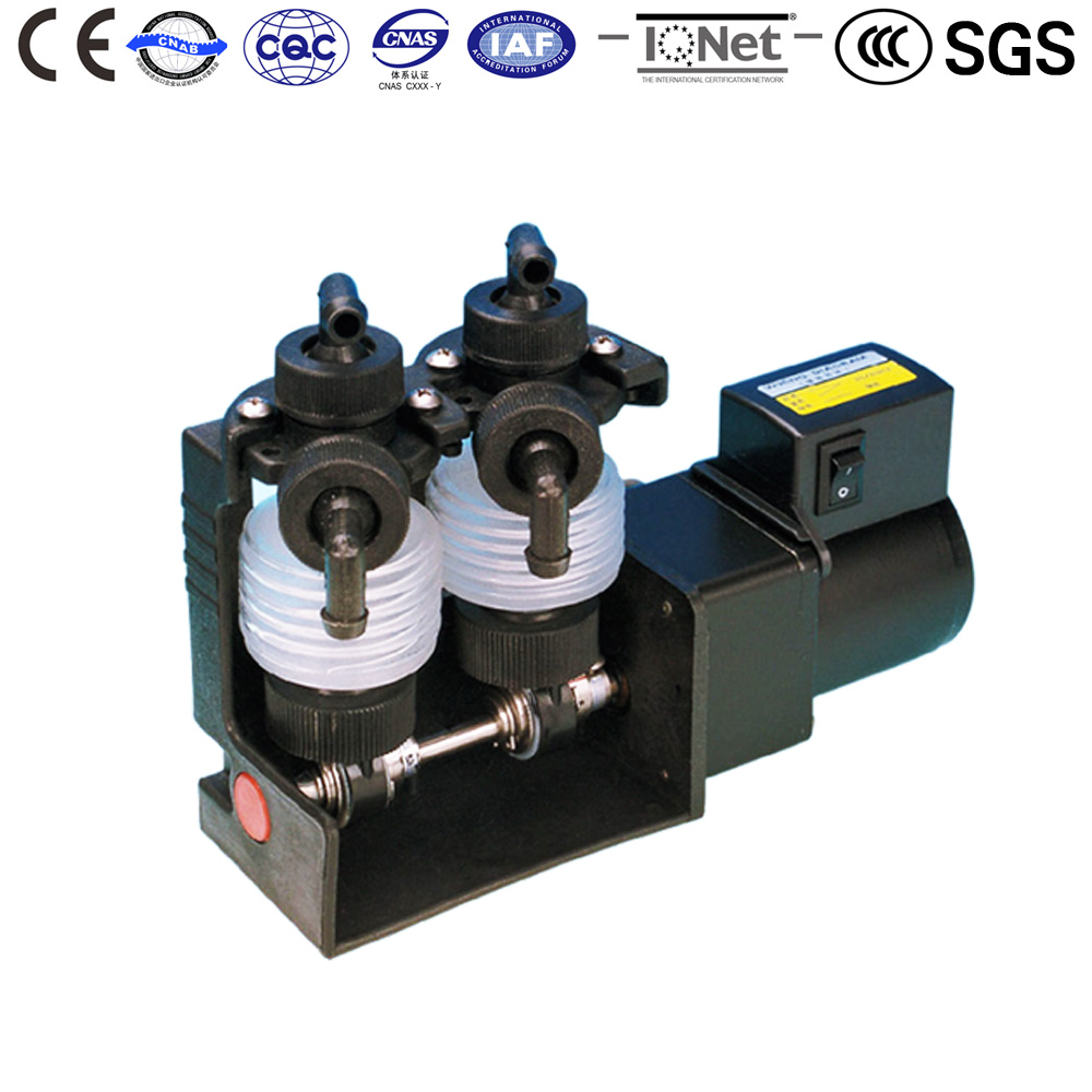 Chemical Bellow Water Pump 2DS-2PU2 220V AC Reciprocating Metering pumps Quantitative supply of electroplate liquid CE approved dali sub k 14 f black