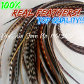 "Free Shipping 6-12"" valued 50pcs grizzly rooster feathers real hair feathers plume hair feather hair extension feather extension"