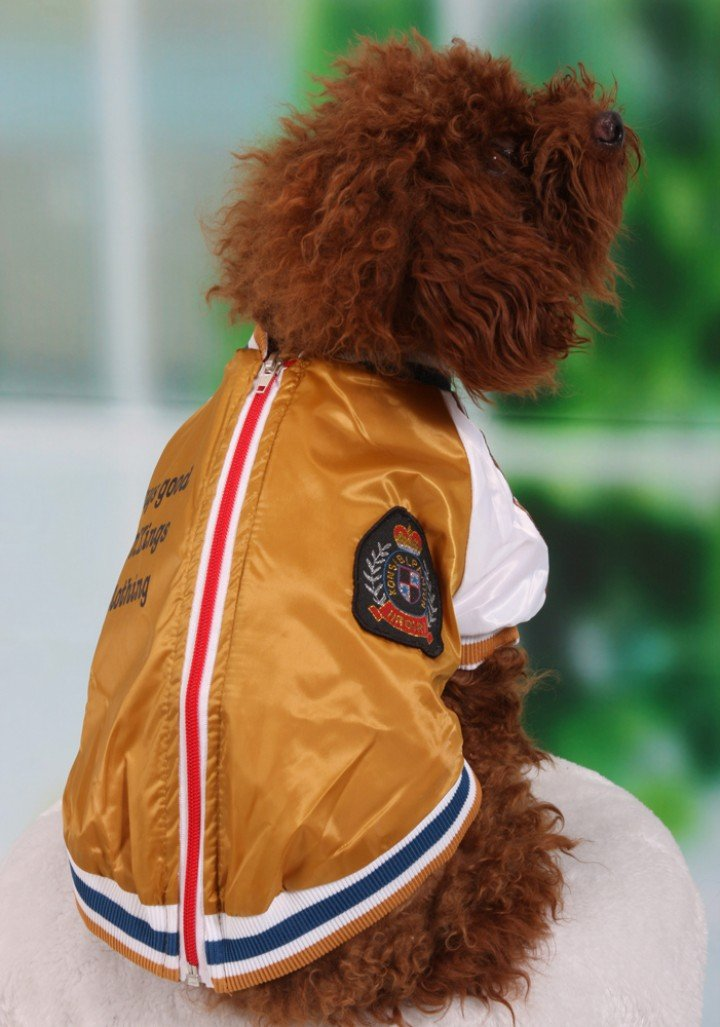 Cool Dog Training Clothes Puppy Racing Suits Dog Motor Coat Fashion Dog Clothes Dogs Sports