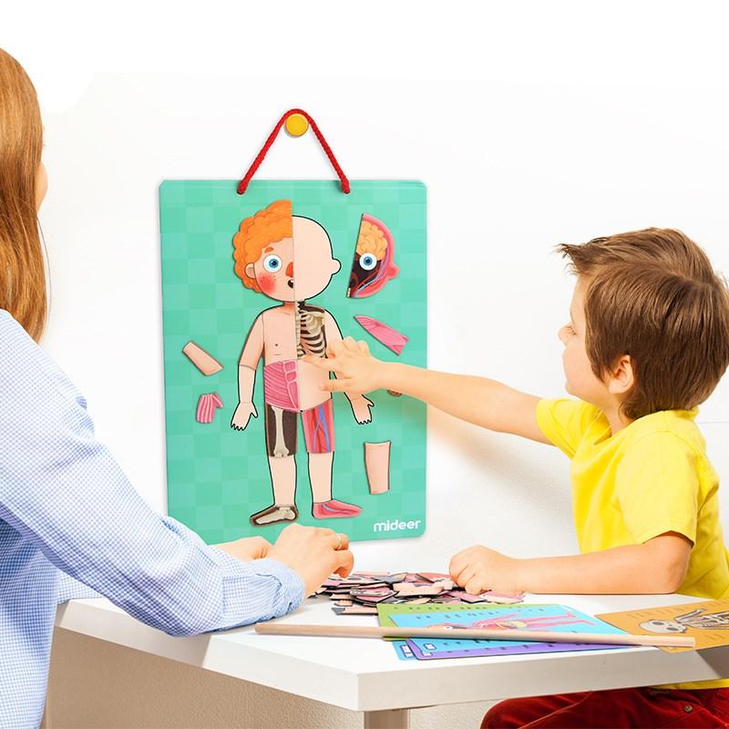 Enfants Magnétique 3d Puzzles Jouets Éducatifs Pour Enfants Aimant Corps Structurels Reconnaissance Puzzle Jouet 84 pièces Aimant Aides Pédagogiques