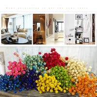 50pcs/lot Home Decor Dried Flower Bouquet Natural Dried Flowers Wedding Party Decorative Photography Props P0.21