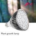 Grow led grow light tent indoor seeds orchids seedlings lampara greenhouse uv light bulbs for turtles lamp tohum Full Spectrum