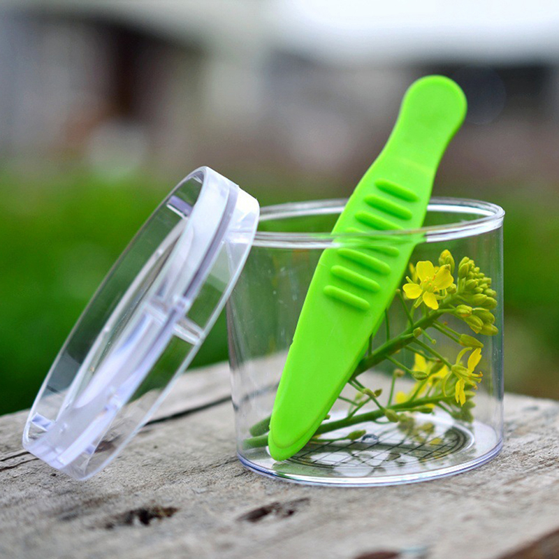 Kids Nature Exploration Toys Kit Children Plant Insect Study Tool - Plastic Scissor Clamp Inset Round Head Scissors Tweezers Toy