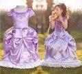 Envío gratis party girls dress 2017 chica manga de soplo púrpura birthday dress flower girl dress sofia la primera princesa vestido traje