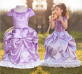 Free ship Party Girls Dress 2017 Girl puff sleeve purple Birthday Dress Flower girl dress Sofia the First Princess Gown Costume