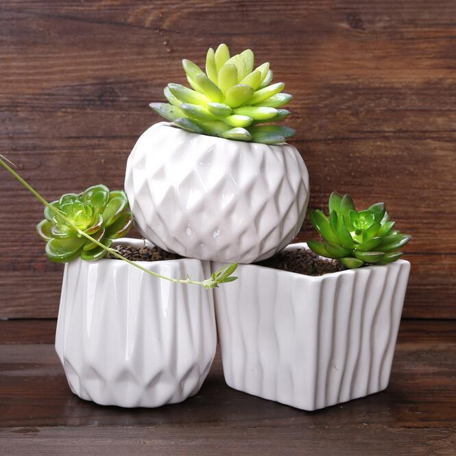Online Buy Wholesale Succulents Pots From China Succulents