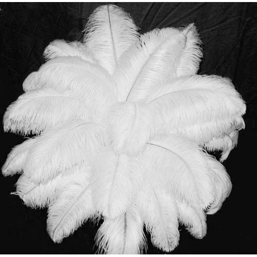 neqw 50 PCS όμορφα φυσικά λευκά φτερά - Τέχνες, βιοτεχνίες και ράψιμο - Φωτογραφία 2