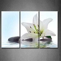 3 Painel Wall Art Branco Lírio Madonna E Pedra Na Água pintura Da Flor Imagem Impressão Sobre Tela Pictures Para Home Decor