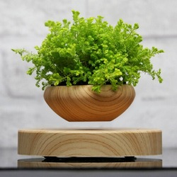 Magnetic Suspended Potted Plant Wood Grain Round LED Light Levitating Rotating  Indoor Air Plant Pot Home Office Decor No Plant