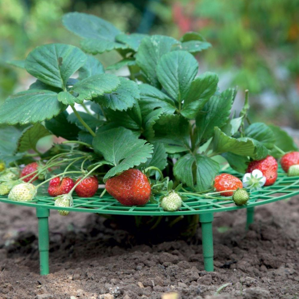 10PCS Strawberry Stand Frame Holder Balcony Planting Rack Fruit Support Plant Flower Climbing Vine Pillar Gardening Stand #4O