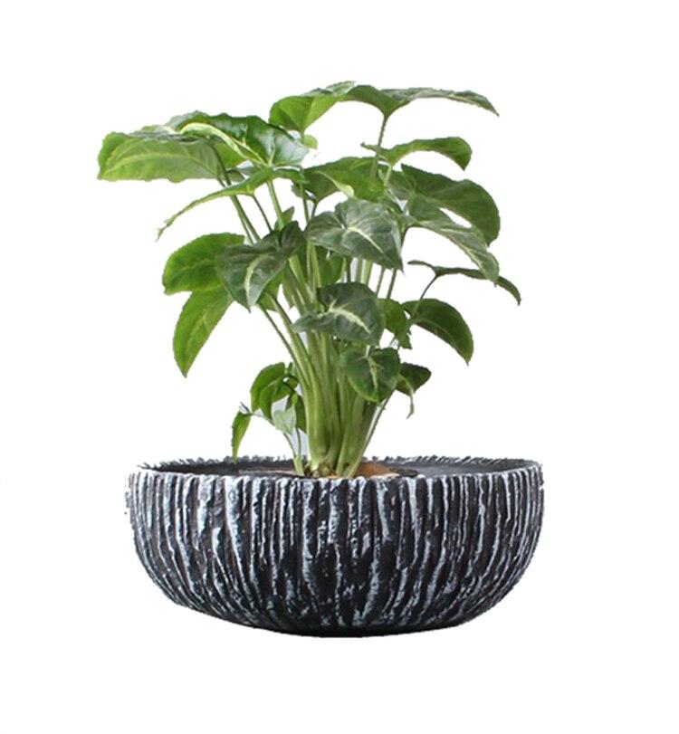 T4U Ceramic Cement Flowerpot For Succulent Planter Pot Cactus Bonsai Plant Pots Flower Pot Container Garden Decoration