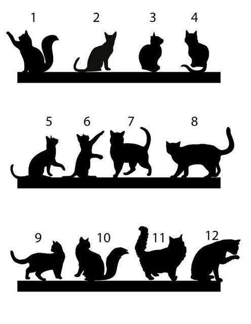 Cat Cake Topper Wedding Cake Topper Cats Silhouette