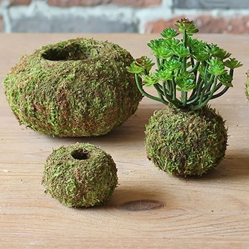 Moss Ball Pot Bird Nest Flower Plant Home Office Desk Table Garden DIY Decoration