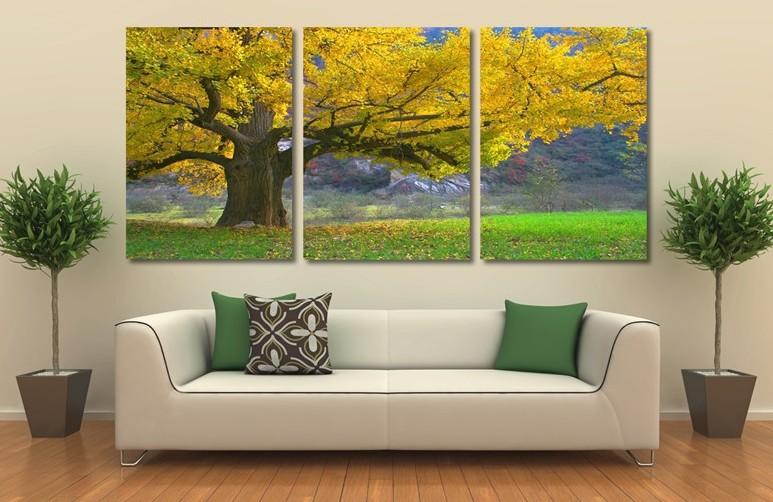 herbst bilder bäume-kaufen billigherbst bilder bäume, Gartenarbeit ideen