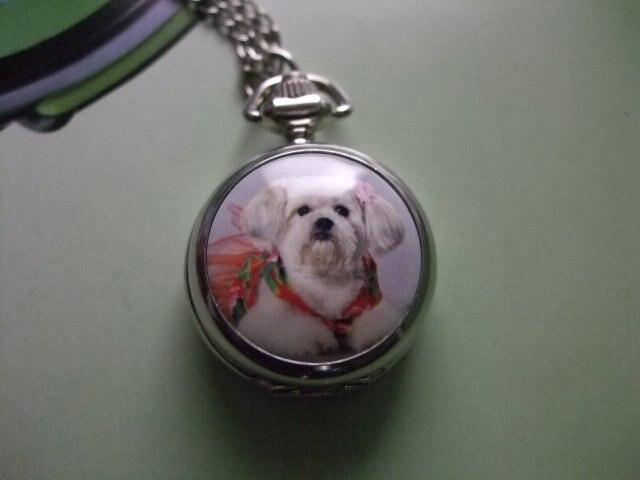 2015 бесплатная доставка продажа оптовая продажа дамы мужские нового античного мини карманные часы ожерелье прекрасная собака wp382