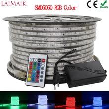 LAIMAIK RGB LED Streifen Licht 5050 Wasserdichte IP67 AC 220V rgb lichter 60 leds/m 5050SMD Mit wireless controller stecker led beleuchtung