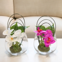 Simulation Butterfly orchid Glass vase PU flowers Potted set Artificial Small bonsai green plants pot culture wedding Home Decor hydrangea simulation small bonsai set ornaments raw silk qiu ju ceramic vase artificial flowers decoration pot living area meal