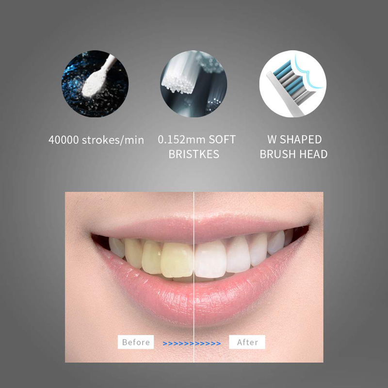 Seago Sonic Electric Toothbrush SG-551 With Replace Brush Heads 4 Clean Modes One Key Operation Sonic Vibration Waterproof Brush