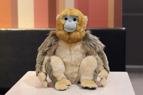 30CM Lifelike Sitting Golden Monkey Stuffed Animal Toys Real Like Soft Snub-nosed Monkey Plush Toy Gifts